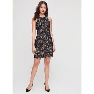 Aritzia Babaton Henry Black Nude Lace Dress